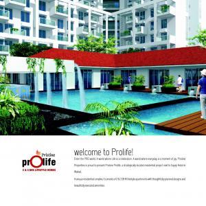 Pristine Prolife II Brochure 2