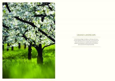Pareena Coban Residences Brochure 7