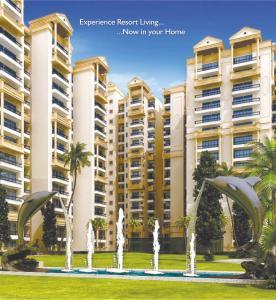 MR Proview Palm Resort Brochure 3