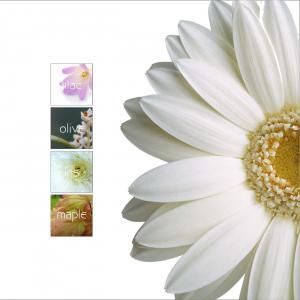 Iscon Iscon Flower Brochure 5