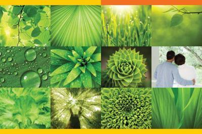 Sare Green Parc Petioles Brochure 2