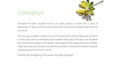 Osian Chlorophyll Brochure 23
