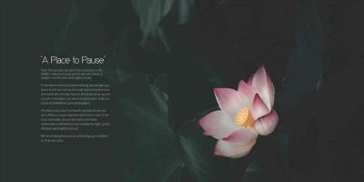 Ankuraa Lotus Brochure 2
