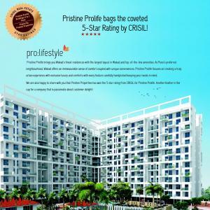 Pristine Prolife II Brochure 3