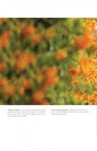 Godrej Icon Brochure 24