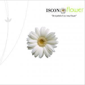Iscon Iscon Flower Brochure 1