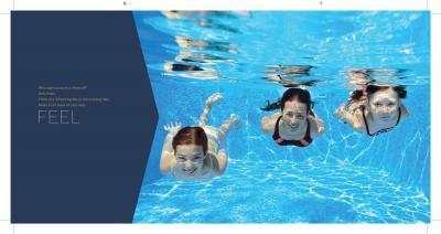 AV Orion Brochure 4