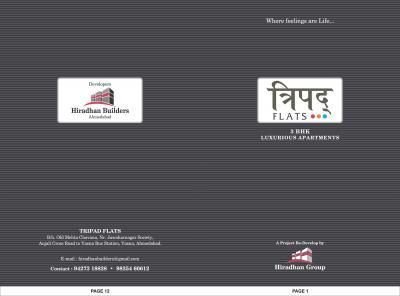 Hiradhan Tripad Flat Brochure 1