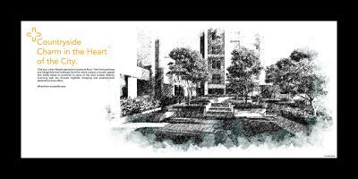 Raojee Palladium Plus Brochure 12