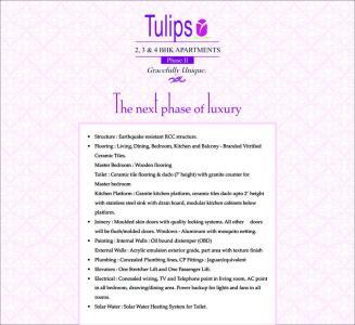 Vascon Tulips Brochure 9