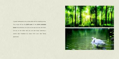 Capstone Life Flowing Tree Brochure 6