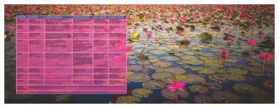 Viraj Lotus Enclave Brochure 22