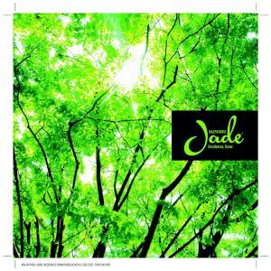 Kalpataru Jade Residences F Brochure 1
