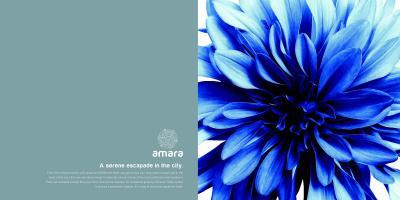Siddh Amara Brochure 2
