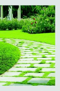 Kalpataru Serenity Bldg 2 Brochure 17