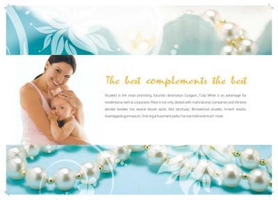 Tulip White Brochure 4