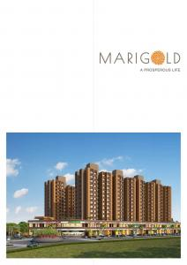 HN Marigold Brochure 3