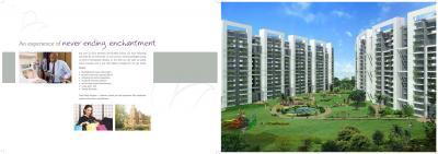 Tulip Violet A3 Tower Brochure 12