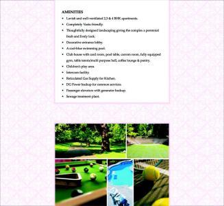 Vascon Tulips Brochure 7