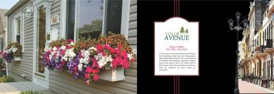 Colorhomes Avenue Brochure 2