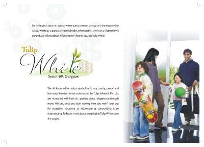 Tulip White Brochure 3