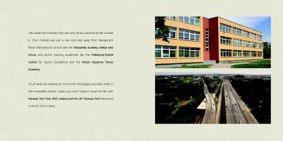 Capstone Life Flowing Tree Brochure 23